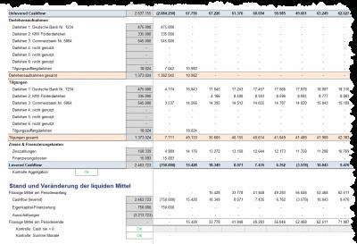Detaillierte Liquiditätsübersicht (Cashflow) auf Jahres- und Monatsbasis (2)