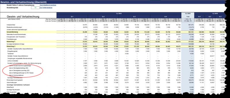 Detaillierte Gewinn- und Verlustrechnung mit Drilldown-Möglichkeit für viele Positionen
