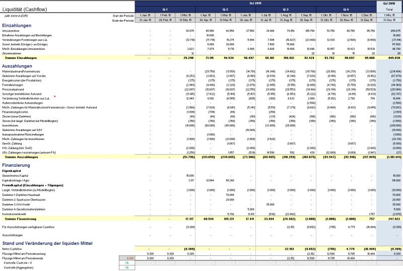 Detaillierte Cashflow-Übersicht (hier direkte Ermittlung)