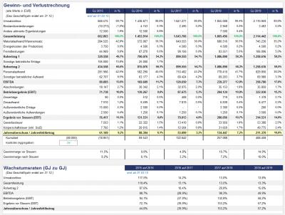 Übersicht: komprimierte (jährliche) Gewinn- und Verlustrechnung