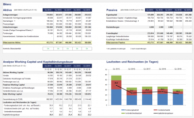 Übersicht: komprimierte Bilanz und Working Capital Analyse