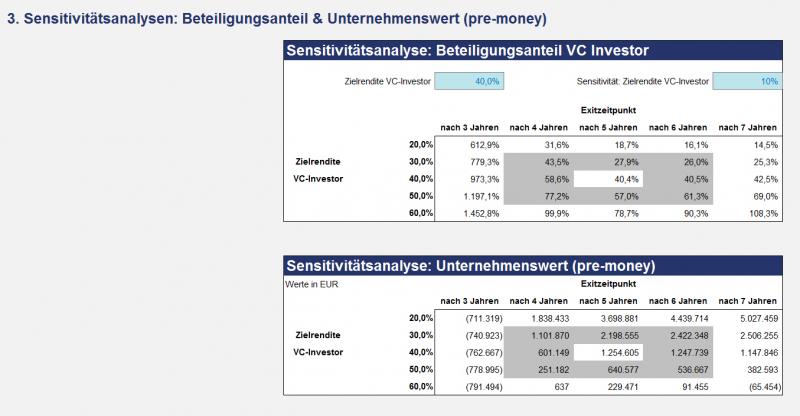 Beteiligungsanteil u. Unternehmenswert - Sensitivitätsanalyse